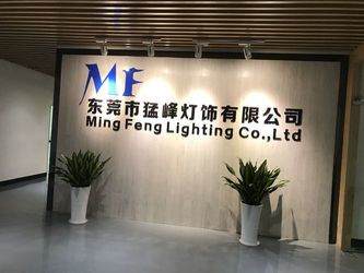 China Ming Feng Lighting Co.,Ltd. company profile