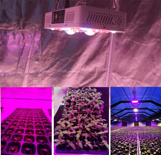 LED Grow Lighs 205W(UV/IR) full-cycle growing from seedling to flower