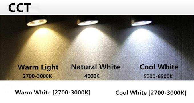 15 W 2/3/4 Wires 1700lm Low Voltage Led Track Lighting , LED COB Track Light