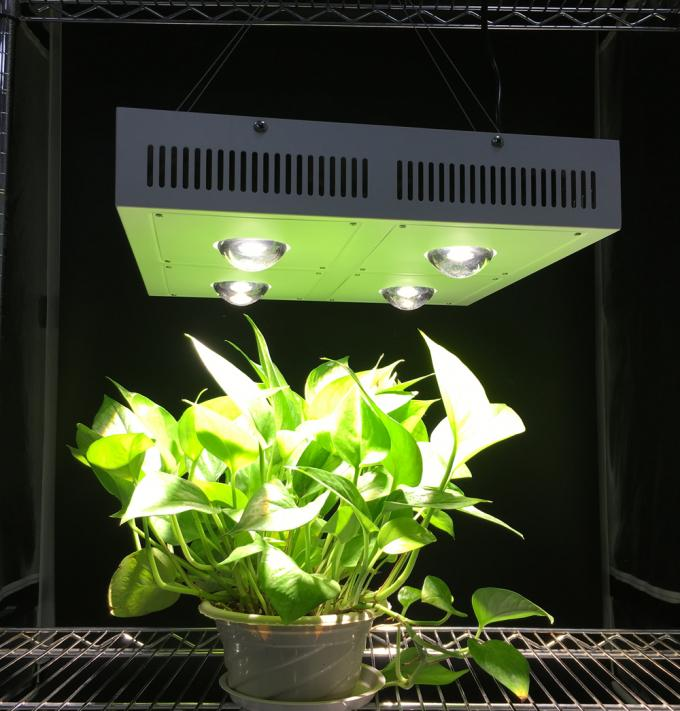 110Watt Plant light with daisy chain connector, AC100-265V indoor led grow light