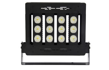 China Anti - Salt Waterproof 100W High Power Outdoor LED Flood Light 130 - 150 LM / W supplier