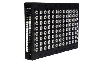 China Waterproof High Power LED Flood Light 800 Watt For Stadium Lighting 150 LM Per Watt supplier