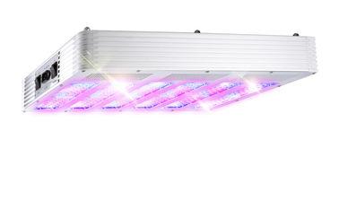 China Full cycle 630 watt LED grow panel light, seeding/growing/blooming/fruiting distributor