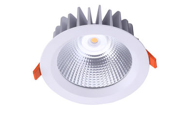 China 16 W IP65 waterproof COB LED Downlights, Meanwell driver, COB CREE LEDS distributor