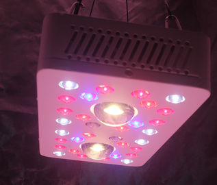 China LED Grow Lighs 205W(UV/IR) full-cycle growing from seedling to flower distributor