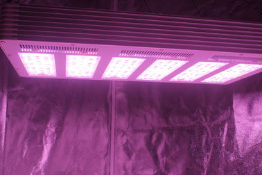 1.5g/watt 630W  LED Growing Light  with full spectrum For Plants Growth