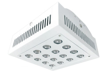 China 55W / 110W / 220W / 330W Hydroponic Led Grow Lights Full Spectrum For Greenhouse factory