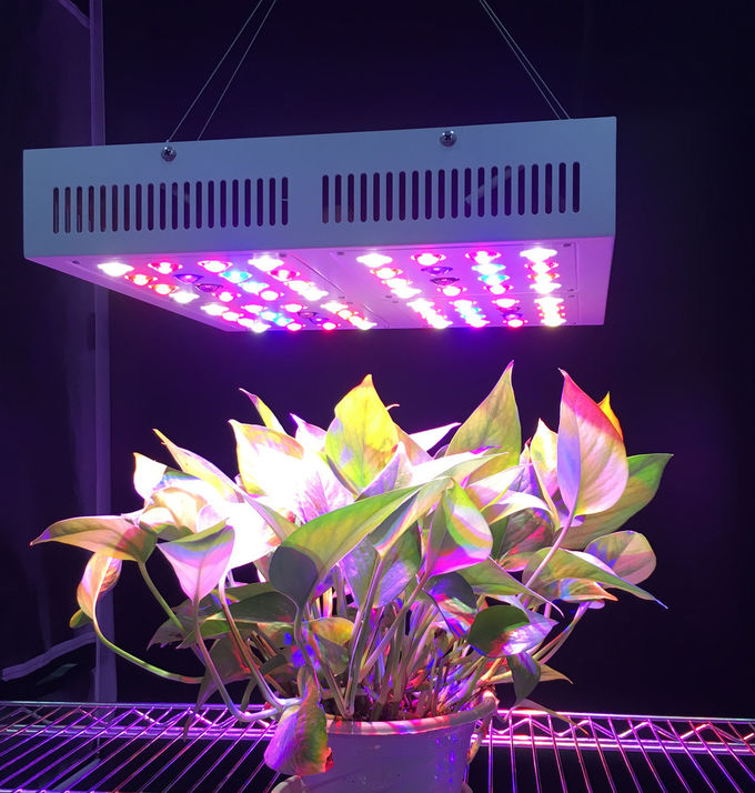 Full Spectrum Led Indoor Grow Lights For Garden Greenhouse Plant Led Growing Lights
